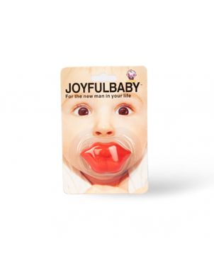 Novelty Pacifier Soother