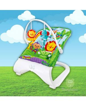 Exquisite Bouncer & Rocker with Vibration & Music